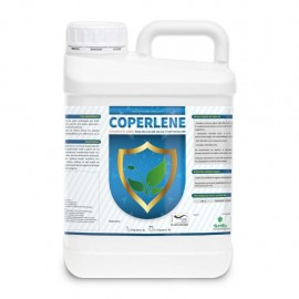 COPERLENE ENV. 5 L